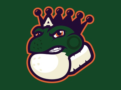 Anaheim Bullfrogs matt mcelroy roller-hockey number9concepts branding sports hockey ducks bullfrogs anaheim