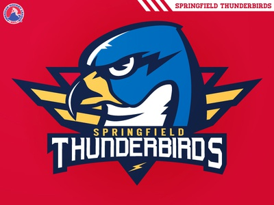 Springfield Thunderbirds florida panthers portland pirates nhl falcons massachusetts hockey ahl thunderbirds springfield