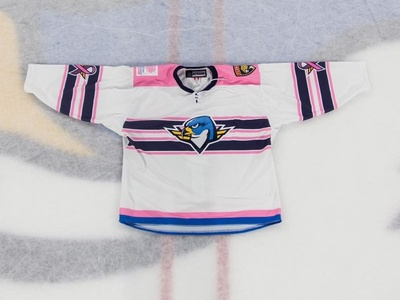 Pink in the Rink breast cancer pink in the rink hockey panthers florida ahl nhl thunderbirds springfield