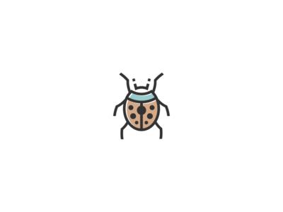 Beetle Fun