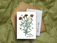 Paper Plant greeting card