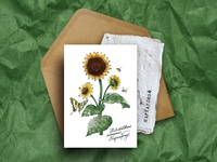 Paper Plant - Botanical greeting card with sunflower seeds