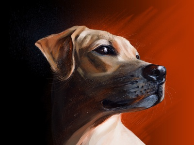 Friend lineart dream think black dark portrait line pet sight animal contrast dog red warm color brush illustration friend