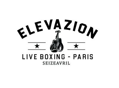 boxing logo 3