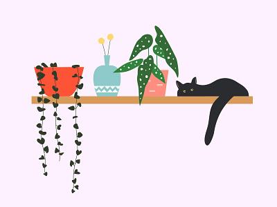 Shelfie shelf cat begonia chain of hearts plants