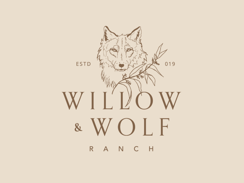 Wolf and Willow Logo drawing hand drawn wolf logo wolf delicate botanical plants branding illustration