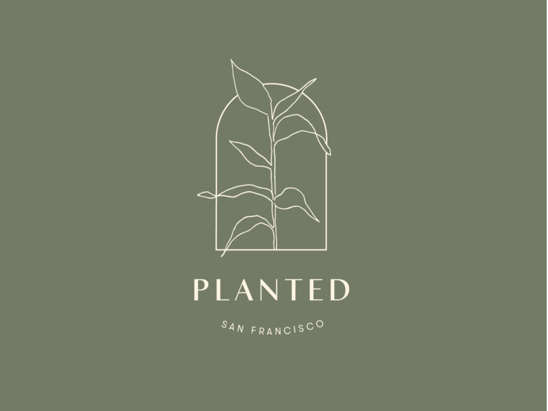 Planted Logo leaves flowers design typography logo drawing plants botanical delicate handdrawn branding illustration
