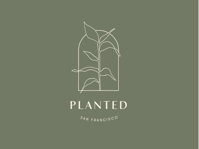Planted Logo leaves flowers design typography logo drawing plants botanical delicate handdrawn branding illustration