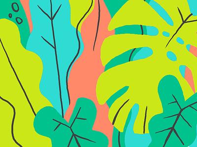 Jungle tropical plants monstera website illustration pattern digital illustration jungle