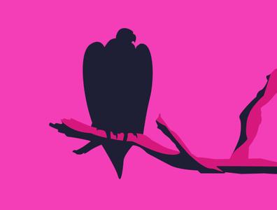 Vultures illustration art graphic design design illustration