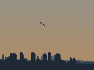 Panorama illustration art graphic design design illustration