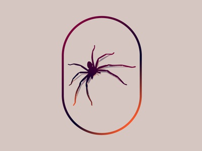 spider illustration art graphic design design illustration