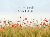 Vi & Valdi - choir logo