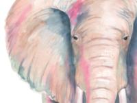 Ella the Elephant