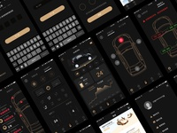 Visual exploration for Car-net App
