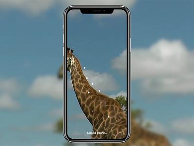 Safari AR