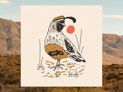 Desert Quail art print letterpress animal illustration bird western desert illustration quail desert