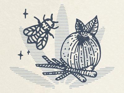 Bee & Orange Detail