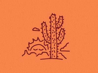 Cactus Sunset sun sunny neature landscape nature arizona sonoran desert southwest desert sunsets sunset cactus