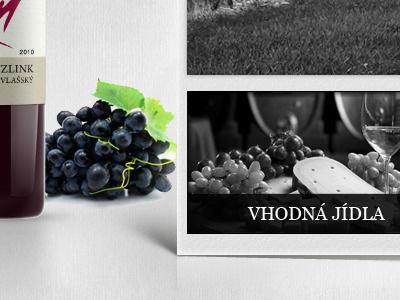 Web Vino Uricar website wineyard wine