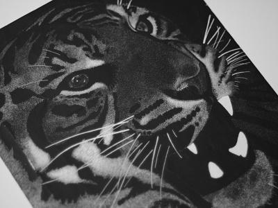 Tiger Scratchboard scratchboard x-acto tiger black and white ink stippling