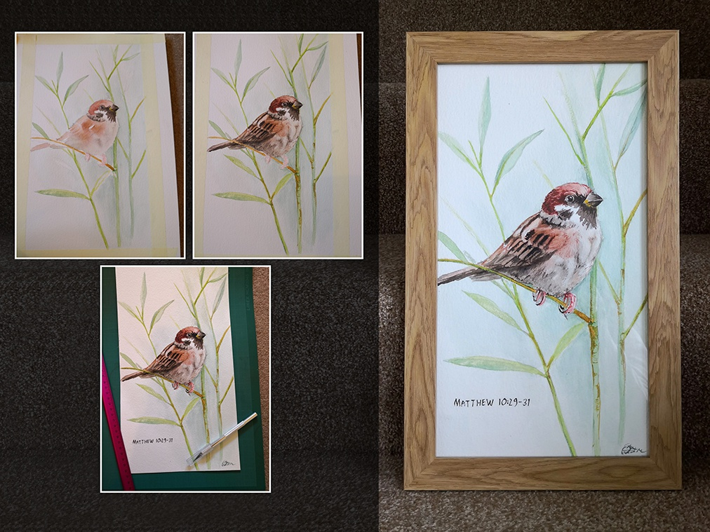 Sparrow painting paint brush watercolor illustration