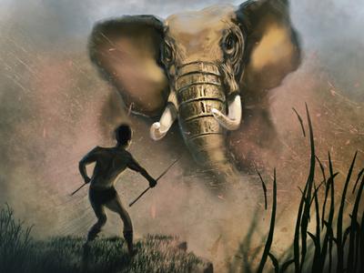 Elephant - wild