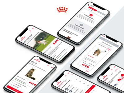 Royal Canin Breed Finder breed ux ui web puppy kitten royal canin