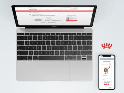 Royal Canin Breed Finder royal canin kitten puppy web ui ux breed