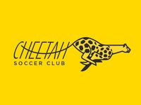 Cheetah Soccer