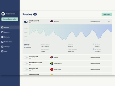 VPN Service vpn interface ui ux digitalproductdesign userinterface uxдизайн creativewebdesign website interfacedesign webdesign uxdesign