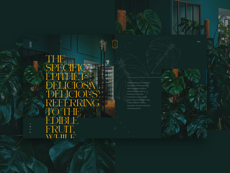 Monstera Deliciosa serif yellow luxury branding illustration flat typography design fullscreen webdesign grid minimal concept