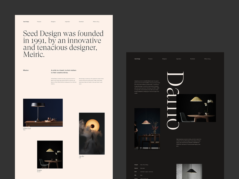 Seed. website web ux sketch brand lights decoration interior design serif vector dark branding ui typography webdesign grid minimal concept