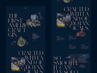American Craft Gin elegant ux serif ui branding concept typography grid minimal webdesign website web brand luxury alcohol