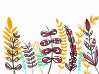 Flowers Illustration Process
