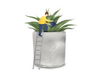 Succulent plant in cement pot illustration
