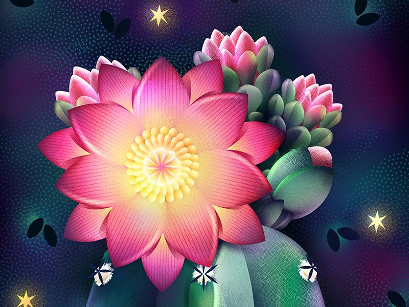 Midnight digital natural garden star night flower plants botanical illustration cactus succulent