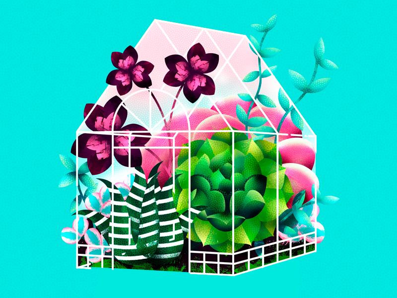 Greenhouse garden succulent illustration flower digital natural botanic plant greenhouse
