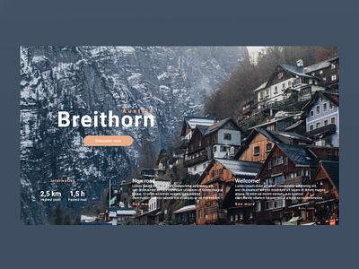 Austria website ux ui design web design web ux ui design