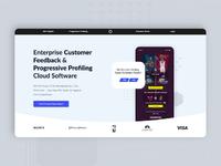 Software Website Design & UX Design