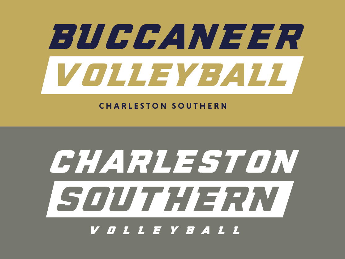 D1 Women's CSU Volleyball: Practice shirts 2019 tee shirt sports design sport typography