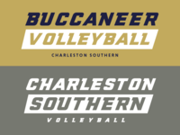 D1 Women's CSU Volleyball: Practice shirts 2019