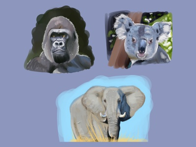 Learning how to digitally paint animals ui character inspire life 2021 modern 2d paint design nature creative artist drawing art clip studio paint modern illustration painting animals illustration wildlife