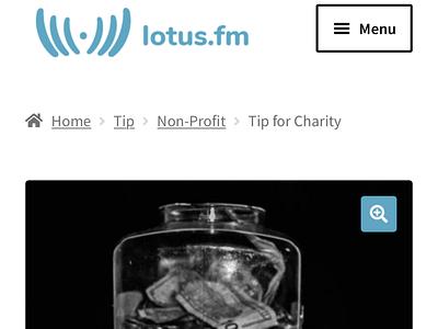 Lotus.fm ecommerce mobile design mobile app design mobile app video logo branding design