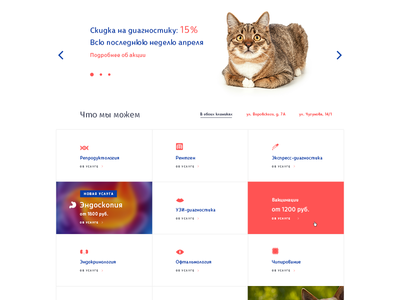 Part of veterinary clinic home page
