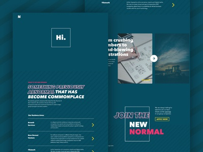 NNG Website Homepage group homepage digital ui design landing page website skien norway new normal