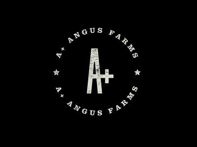 A+ Angus Farms moo cows branding logo