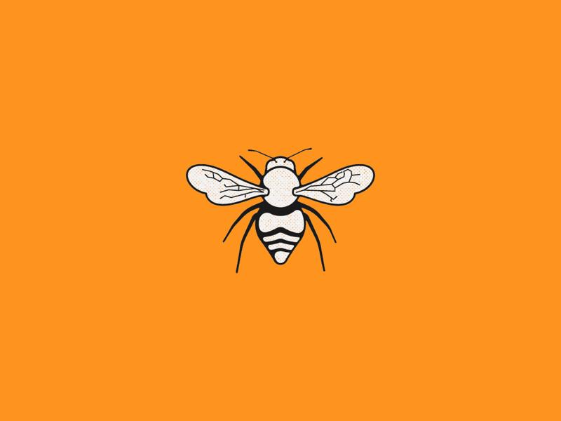🐝 buzz illustration bee