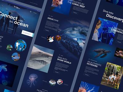 Palma Aquarium sea fish aquarium ux hero website homepage landing page ui sketch web design