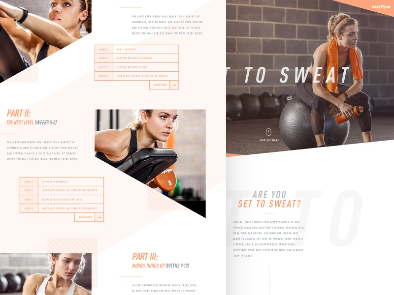 Set To Sweat web typograpahy health fitness sport design ux ui website landing page
